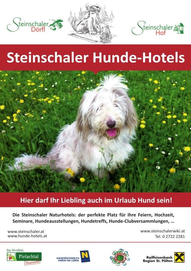 www.steinschalerwiki.at Tel. 0 2722 2281