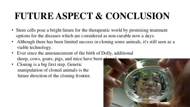 human cloning essay conclusion Essay about cloning pros and cons choosing a topic for an argumentative essay can sometimes be a hard task, and it is very important to find something that will give.