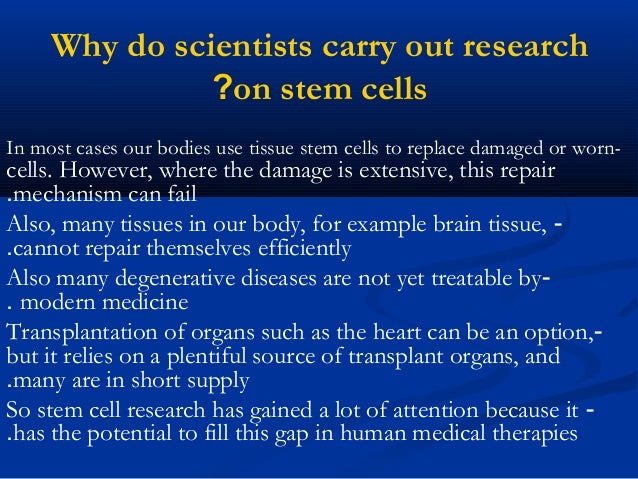 Stem cell research basics