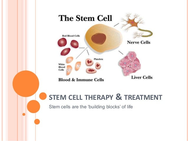 Stem Cell Therapy & Treatment