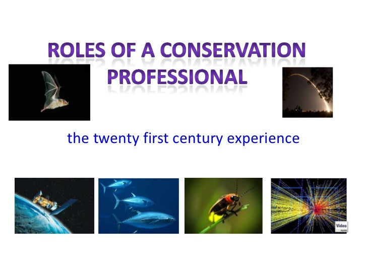 Stenquist the conservation professional
