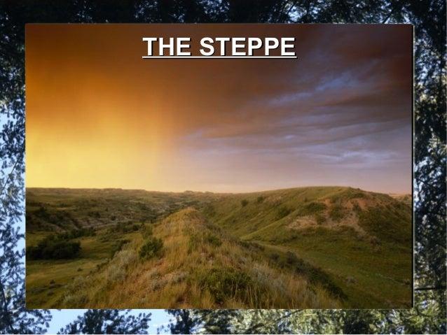 Steppe Biome