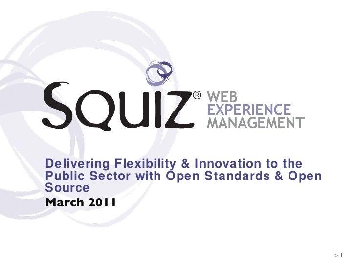 Stephen Morgan: Squiz Government Seminar Presentation -