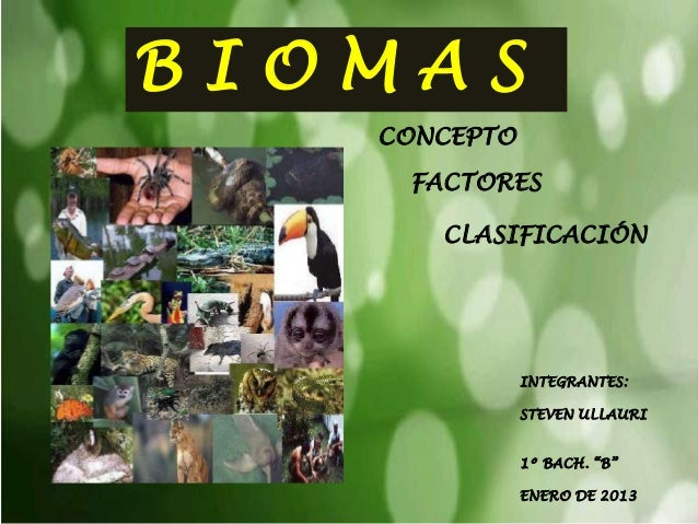 BIOMAS   CONCEPTO    FACTORES      CLASIFICACIÓN              INTEGRANTES:              STEVEN ULLAURI              1º BAC...