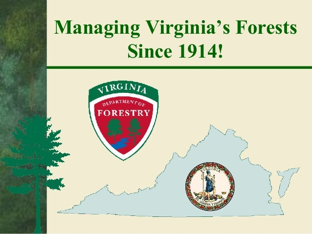 Managing Virginia's Forests Since 1914!