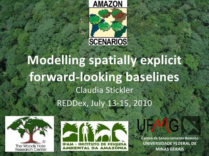 Centro de Sensoriamento Remoto<br />UNIVERSIDADE FEDERAL DE MINAS GERAIS<br />Modelling spatially explicit forward-looking...