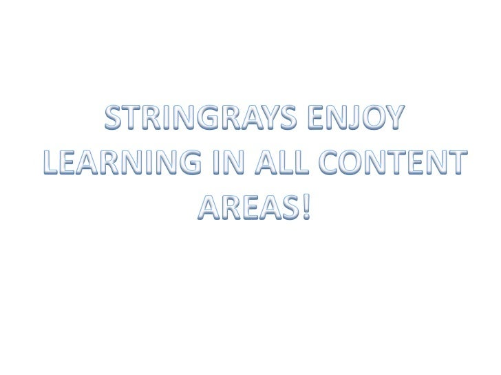 STRINGRAYS ENJOY LEARNING IN ALL CONTENT AREAS!<br />