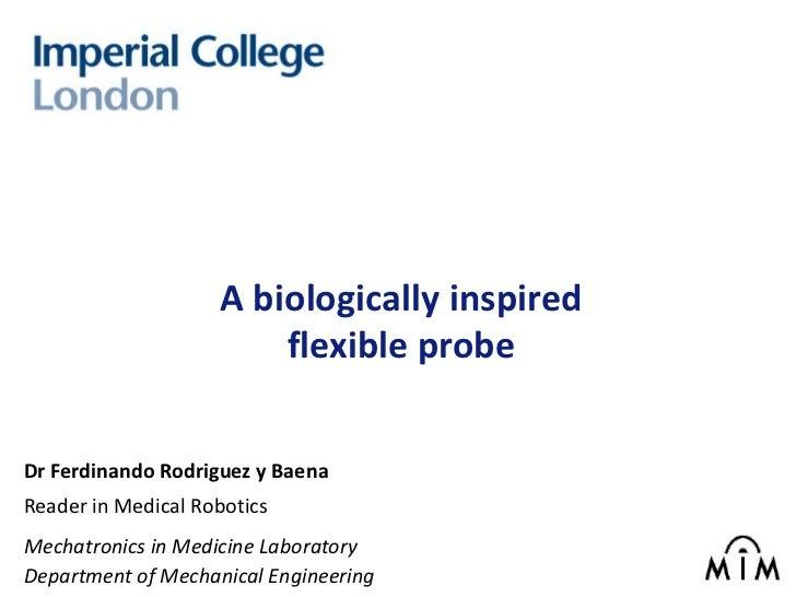 A biologically inspired                        flexible probeDr Ferdinando Rodriguez y BaenaReader in Medical RoboticsMech...