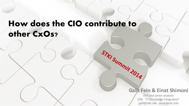 How does the CIO contribute to other CxOs