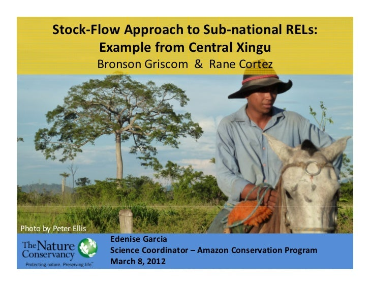 Stock-Flow Approach to Sub-national RELs:                Example from Central Xingu                       Bronson Griscom ...