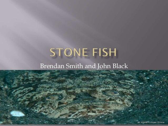 Brendan Smith and John Black