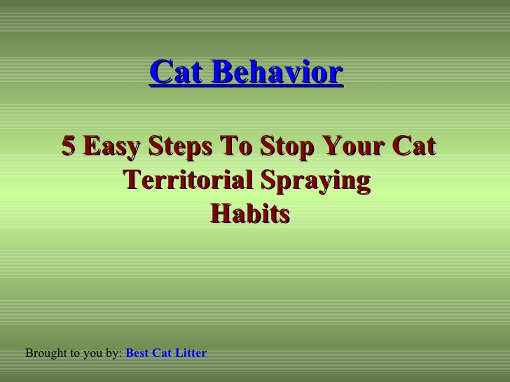 Stop Urine Spraying In Cats