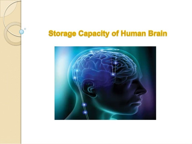 memory storage in the brain Storage of memory 3  brain solely responsible for all memory, though there are certain regions related to specific memory subsystems i.
