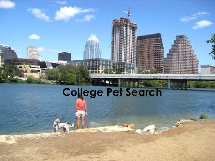 College Pet Search