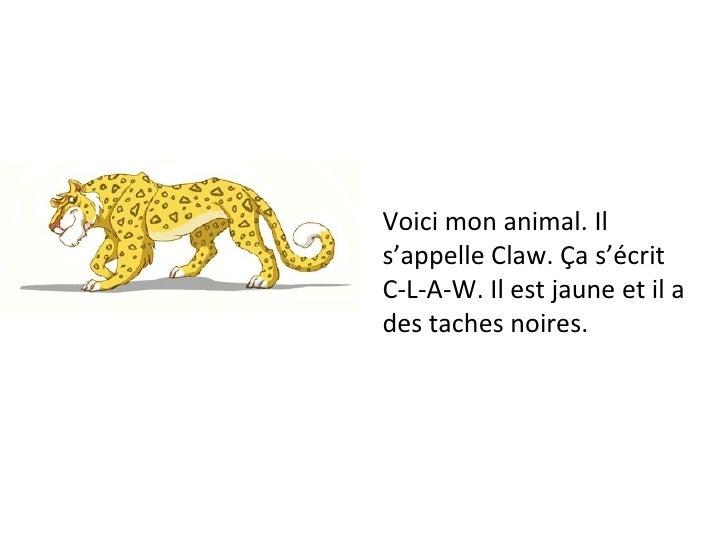 Voici mon animal. Il s'appelle Claw. Ça s'écrit C-L-A-W. Il est jaune et il a des taches noires.
