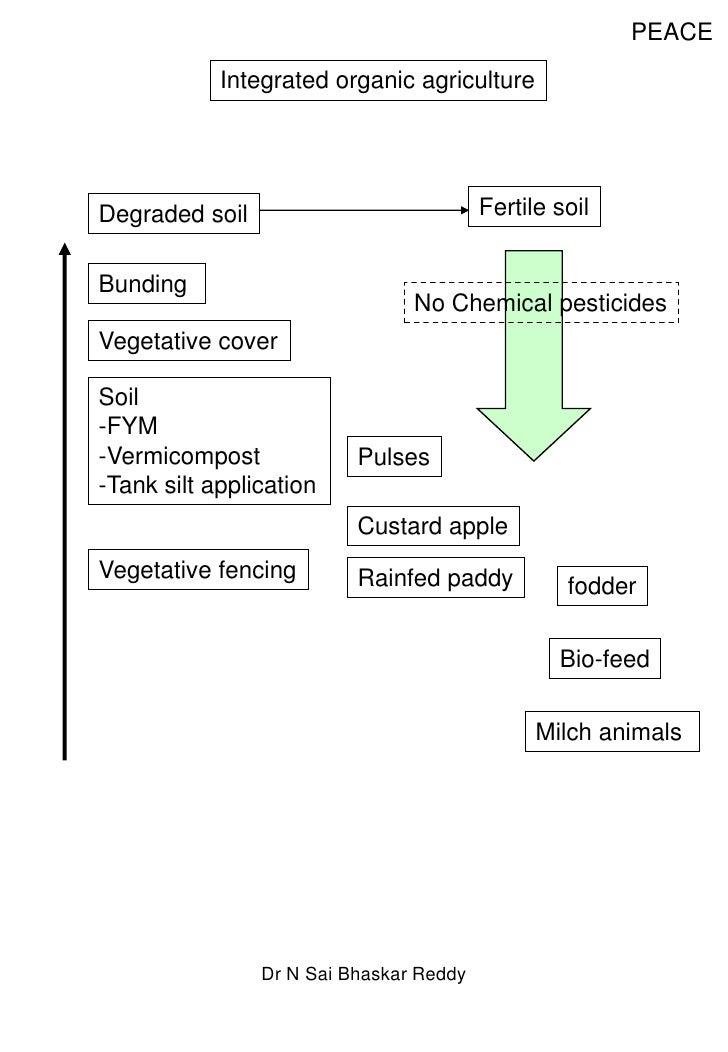 PEACE<br />Integrated organic agriculture<br />Fertile soil<br />Degraded soil<br />Bunding <br />No Chemical pesticides<b...