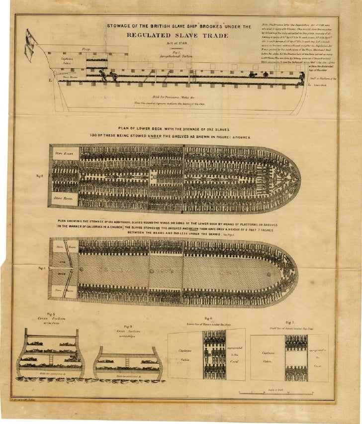 Stowage Of The British Slave Ship Brookes Under The Regulated Slave Trade