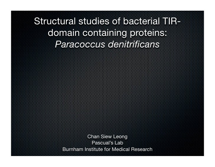 Structural studies of bacterial TIR-   domain containing proteins:     Paracoccus denitrificans                Chan Siew Le...