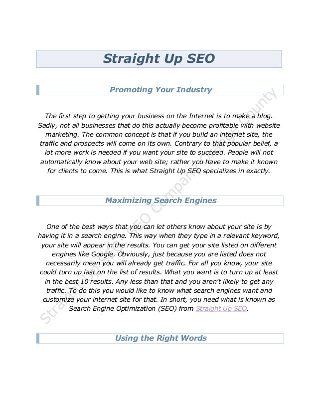 Straight Up SEO                       Promoting Your Industry  The first step to getting your business on the Internet is ...