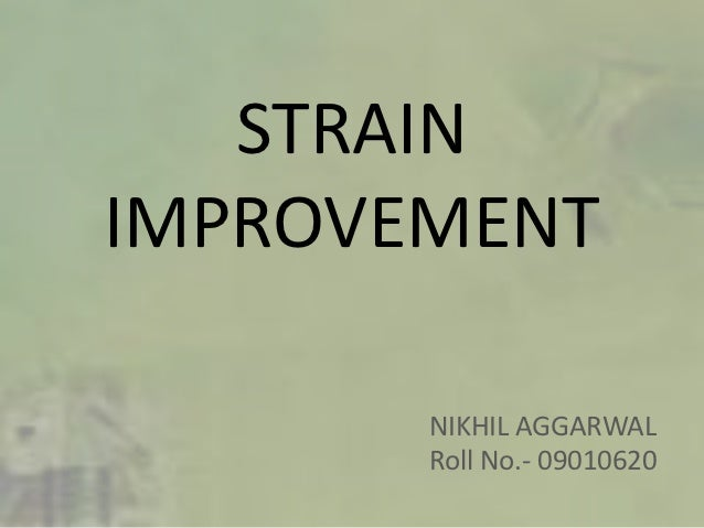 STRAINIMPROVEMENT       NIKHIL AGGARWAL       Roll No.- 09010620