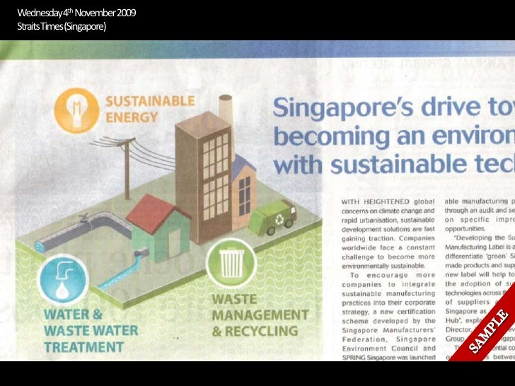 Straits Times Infographic Example