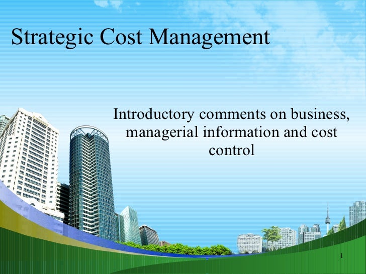 cango financial analysis term paper