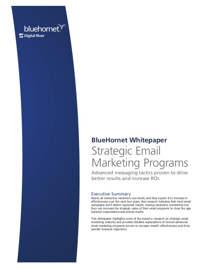 BlueHornet Whitepaper                                                         Strategic Email                             ...