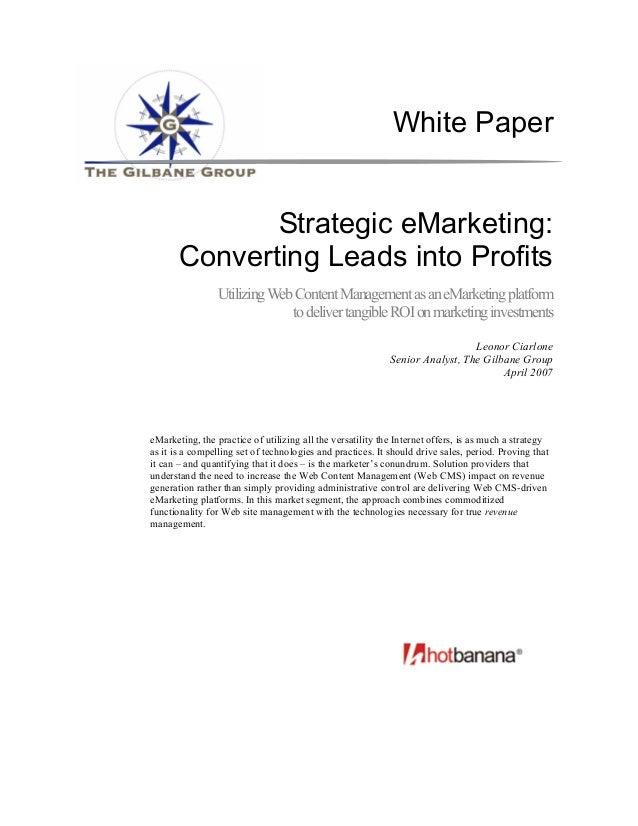 White Paper              Strategic eMarketing:       Converting Leads into Profits                 Utilizing Web Content M...