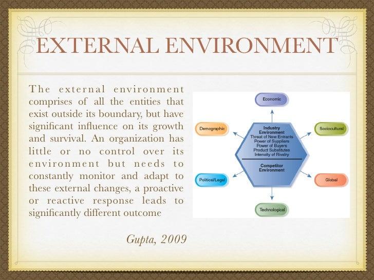 external environmental influences essay