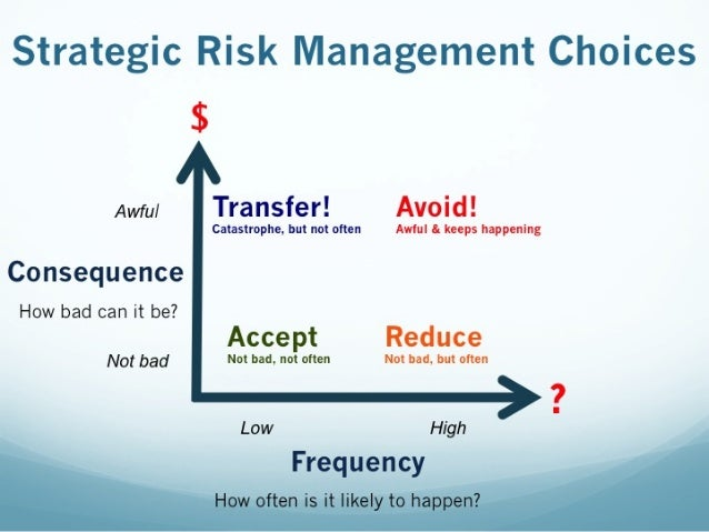 Strategic Risk Management Choices