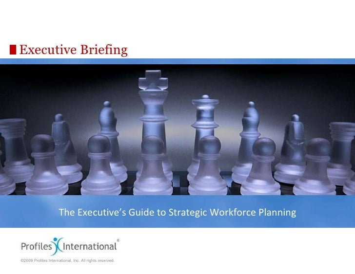 Executive Briefing The Executive's Guide to Strategic Workforce Planning