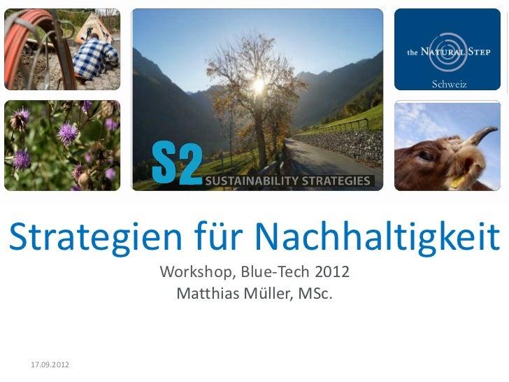 SchweizStrategien für Nachhaltigkeit              Workshop, Blue-Tech 2012               Matthias Müller, MSc. 17.09.2012
