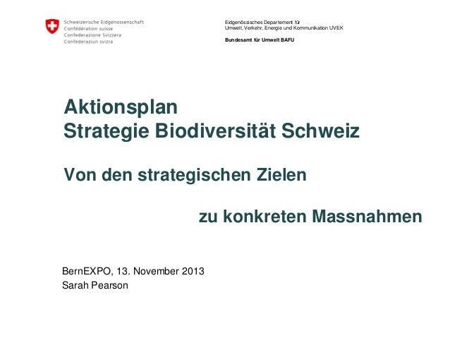 Eidgenössisches Departement für Umwelt, Verkehr, Energie und Kommunikation UVEK Bundesamt für Umwelt BAFU  Aktionsplan Str...