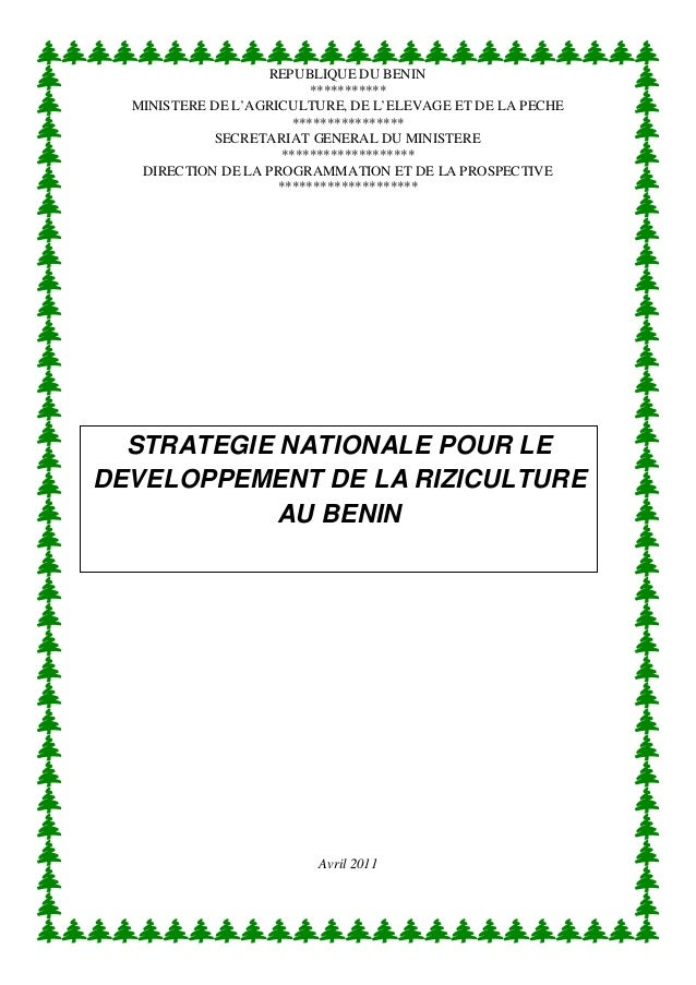 Strategie nationale pour le developpement de la riziculture au benin