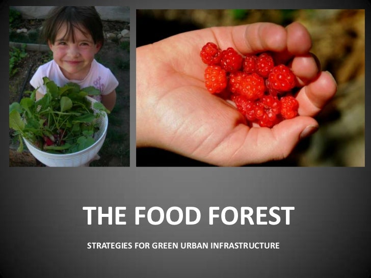 The Food Forest<br />Strategies For Green Urban Infrastructure<br />