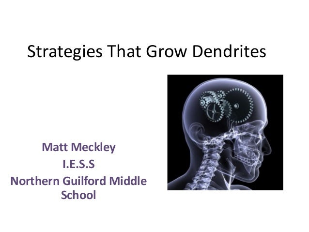 Strategies That Grow Dendrites Matt Meckley I.E.S.S Northern Guilford Middle School