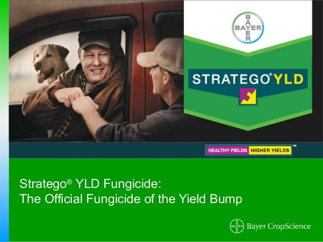 Stratego® YLD Fungicide:The Official Fungicide of the Yield Bump