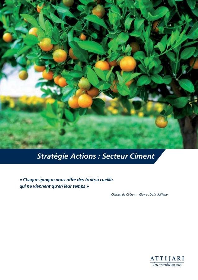 Stratégie Actions : Secteur Ciment « Chaque époque nous offre des fruits à cueillir qui ne viennent qu'en leur temps » Cit...