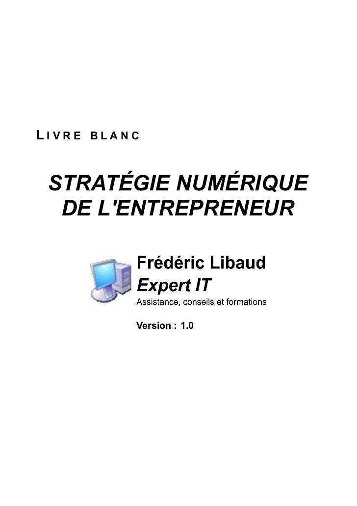 LIVRE BLANC STRATÉGIE NUMÉRIQUE  DE LENTREPRENEUR          Version : 1.0