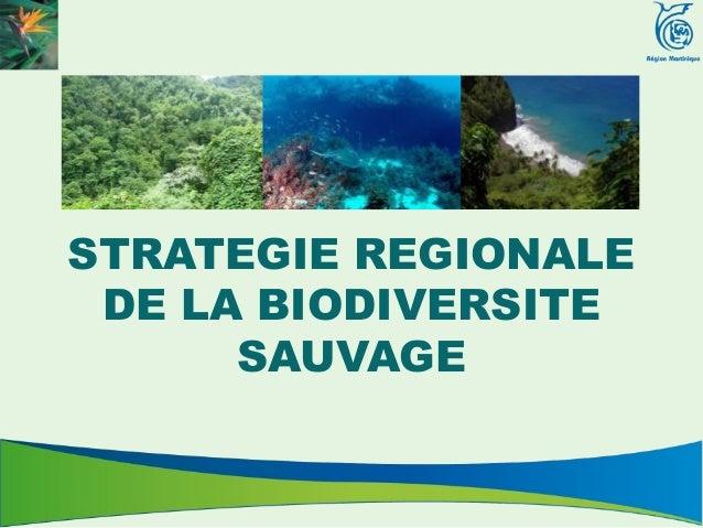 STRATEGIE REGIONALE DE LA BIODIVERSITE      SAUVAGE