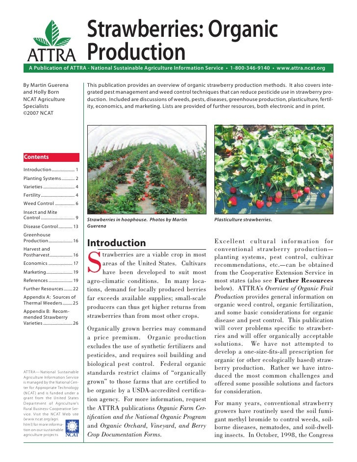 Strawberries: Organic   ATTRA                                      Production    A Publication of ATTRA - National Sustain...