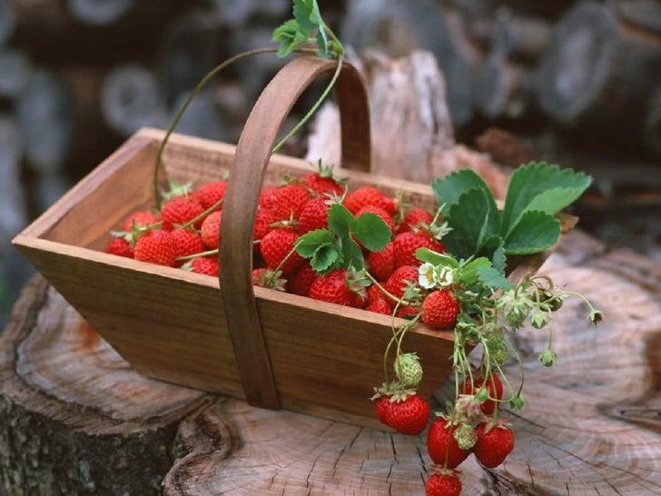 Strawberry.. Very Eat.