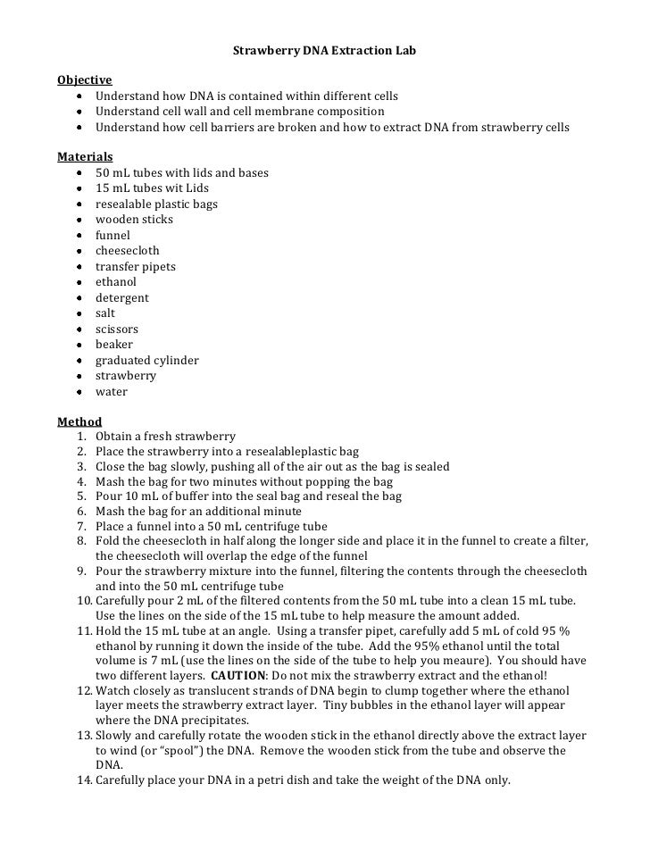 how to get dna from banana extraction essay Writing an essay is a vital skill for being successful at university this  source for  extracting dna because they are easy to pulverize and contain enzymes   biology 1b lab report for dna banana extraction lab name: background: dna  is.