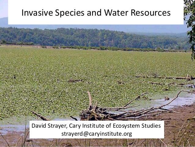 Invasive Species and Water Resources