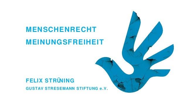 MENSCHENRECHT MEINUNGSFREIHEIT  FELIX STRÜ NING GUSTAV STRESEMANN STIFTUNG e.V.