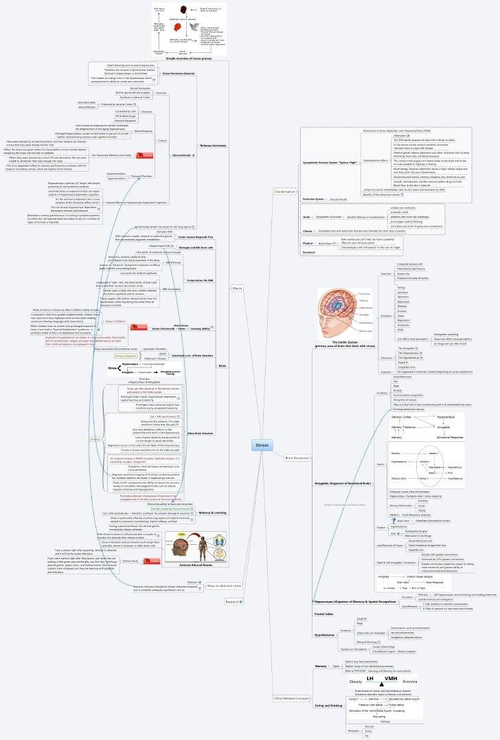 Stress - Mind Map