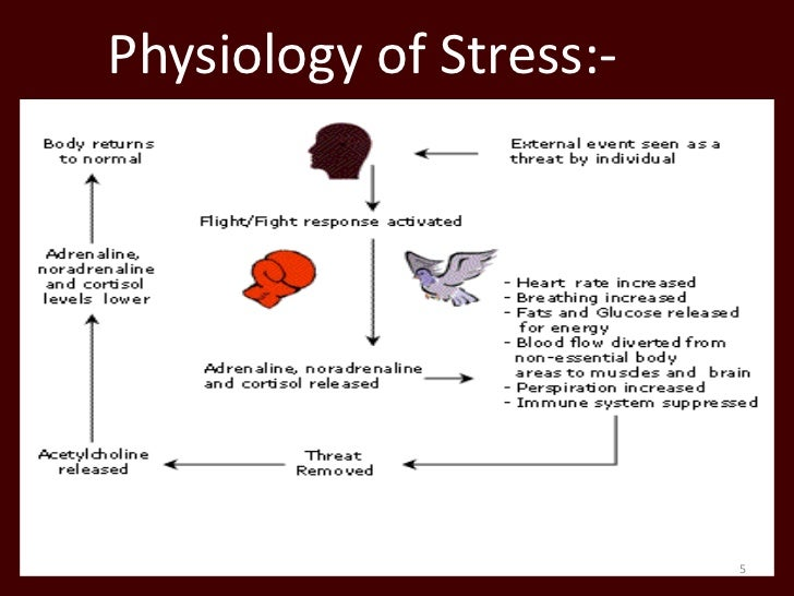 yoga and music therapy as effective methods of stress management Mind-body strategies that can have a beneficial effect on both physical and mental/emotional pain include eft, massage, biofeedback, tai chi, breathing exercises, hypnosis, music therapy, yoga, visualization and incanting a mantra.