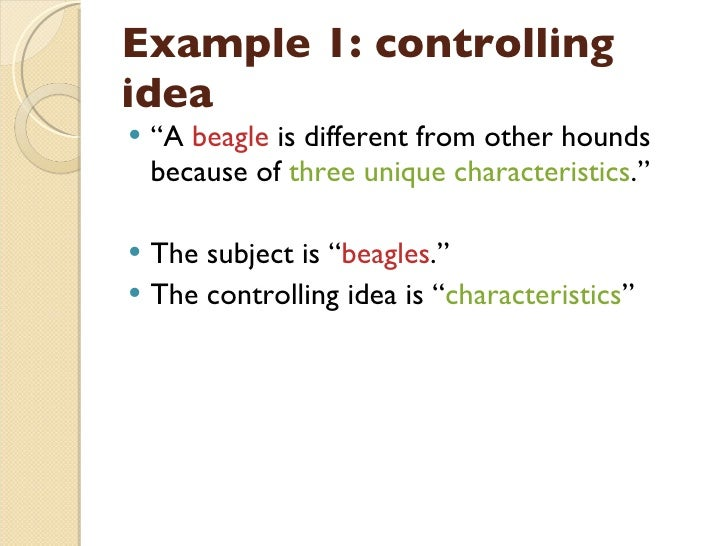 What is a controlling idea essay