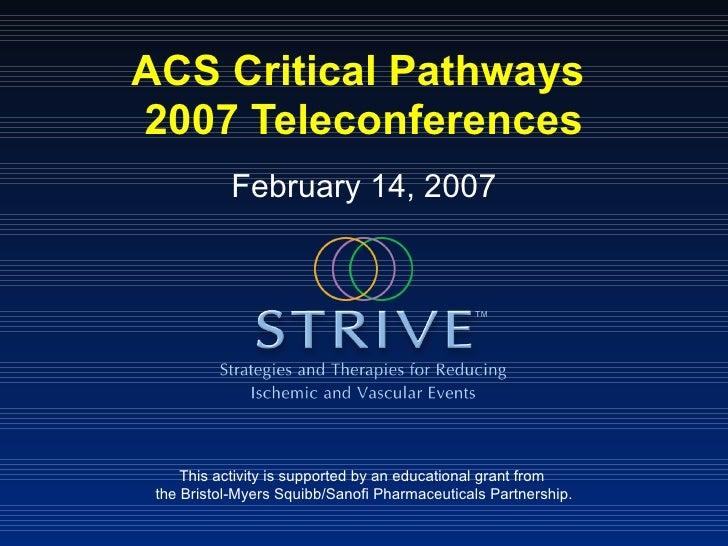 Strive Teleconf Presentation Feb14 2007