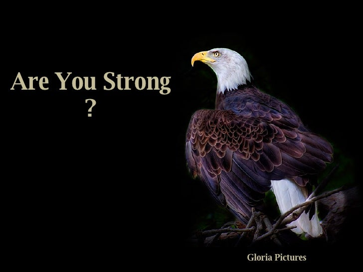 Are You Strong ? Gloria Pictures